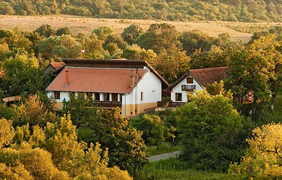 adelaparvu.com despre Casa Altringen, pensiune rustica Romania, interior design Cass Design (23)