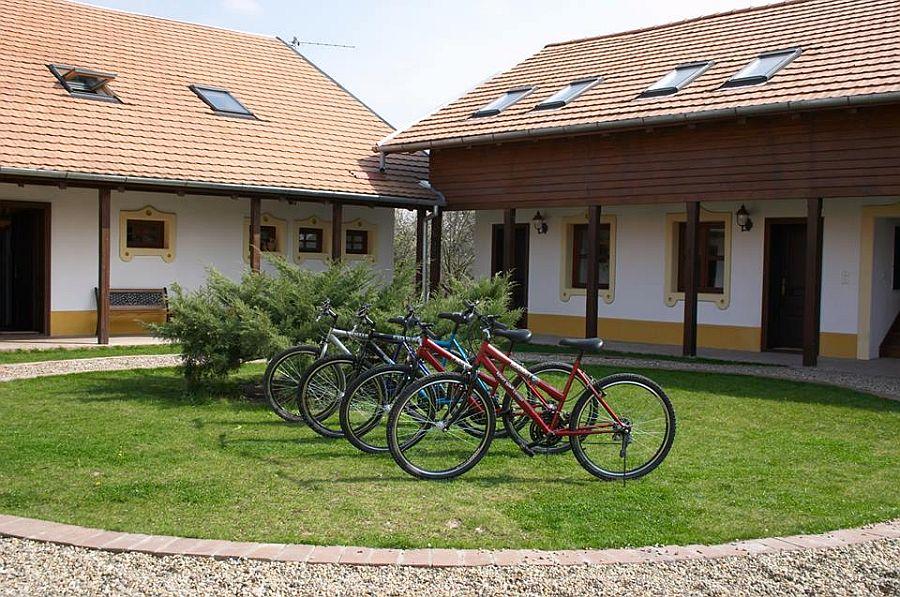 adelaparvu.com despre Casa Altringen, pensiune rustica Romania, interior design Cass Design (26)
