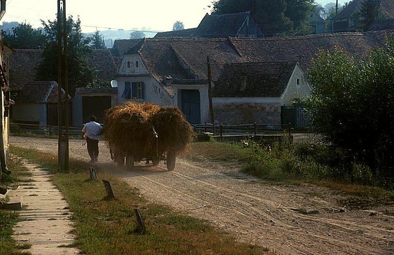 adelaparvu.com despre Casa Noah, casa de oaspeti Richis, Romania, guesthouse, bedandbreakfast Richis, Romania (19)