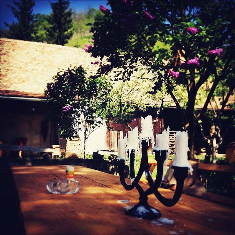 adelaparvu.com despre Casa Noah, casa de oaspeti Richis, Romania, guesthouse, bedandbreakfast Richis, Romania (8)