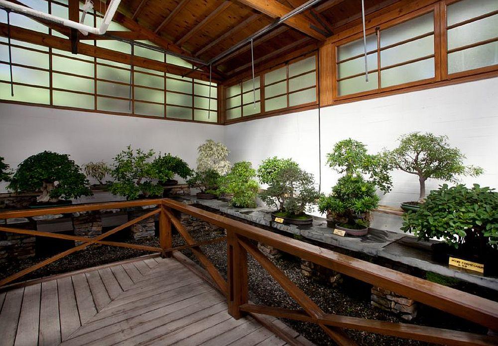 adelaparvu.com despre Muzeul Bosaiului Marbella, Bonsai Museum Spain, Text Carli Marian (27)