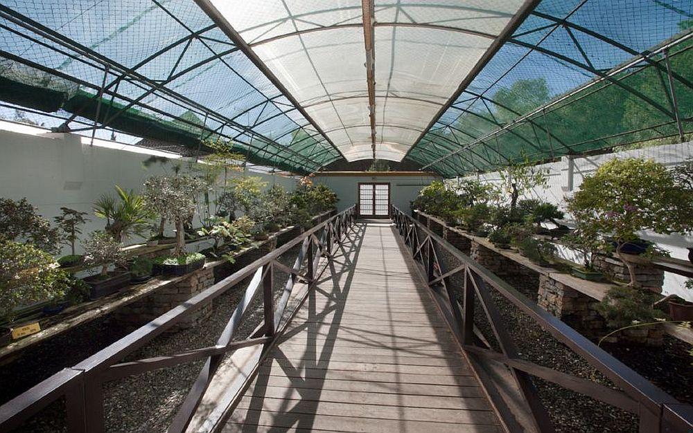 adelaparvu.com despre Muzeul Bosaiului Marbella, Bonsai Museum Spain, Text Carli Marian (28)
