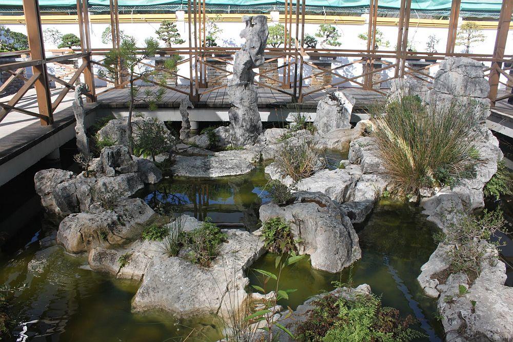 adelaparvu.com despre Muzeul Bosaiului Marbella, Bonsai Museum Spain, Text Carli Marian (33)