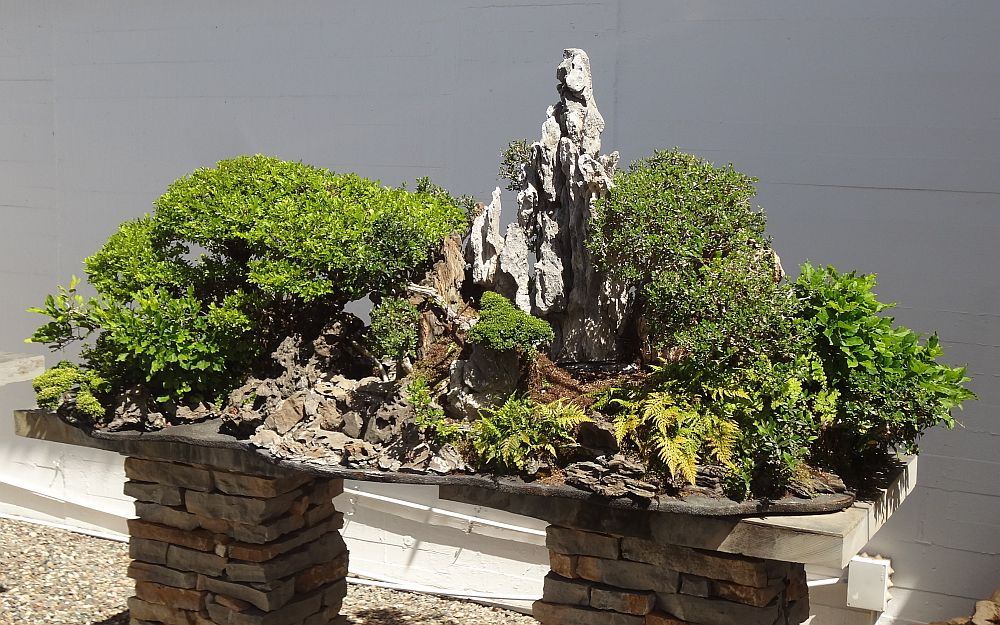 adelaparvu.com despre Muzeul Bosaiului Marbella, Bonsai Museum Spain, Text si foto Carli Marian (8)