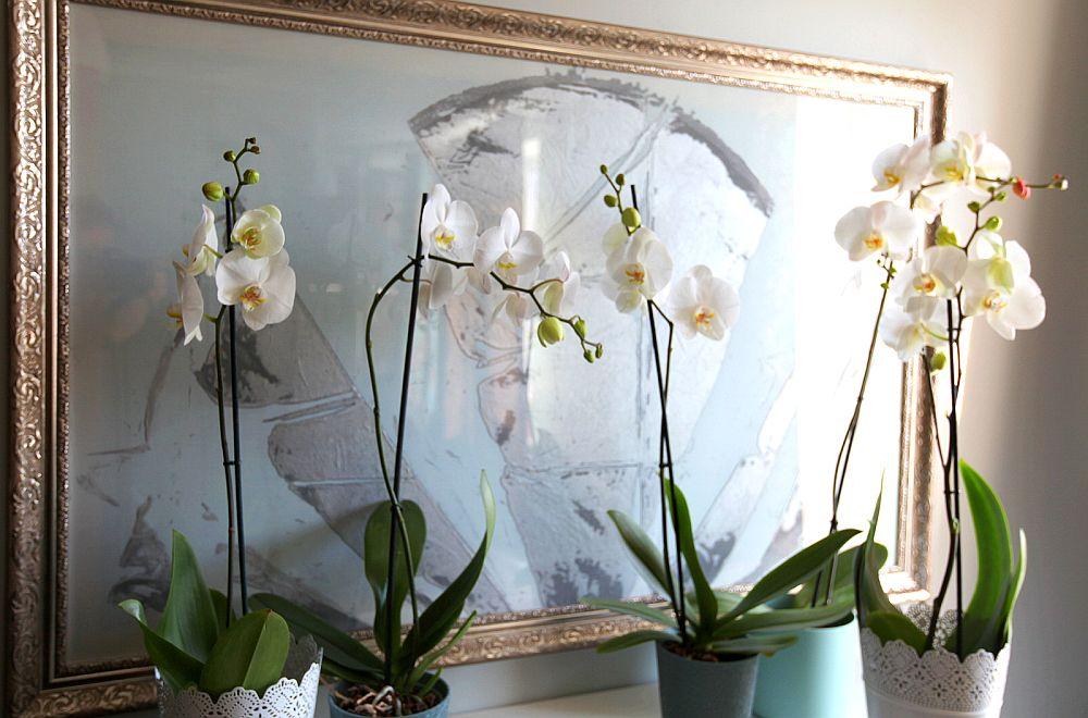 adelaparvu.com despre apartament 3 camere Bucuresti, designer Tanya Solomitchi (13)