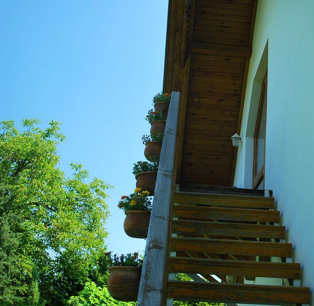 adelaparvu.com despre casa cu acoperis din stuf, casa in Ungaria, casa de vacanta, Foto Bungalow Net (7)