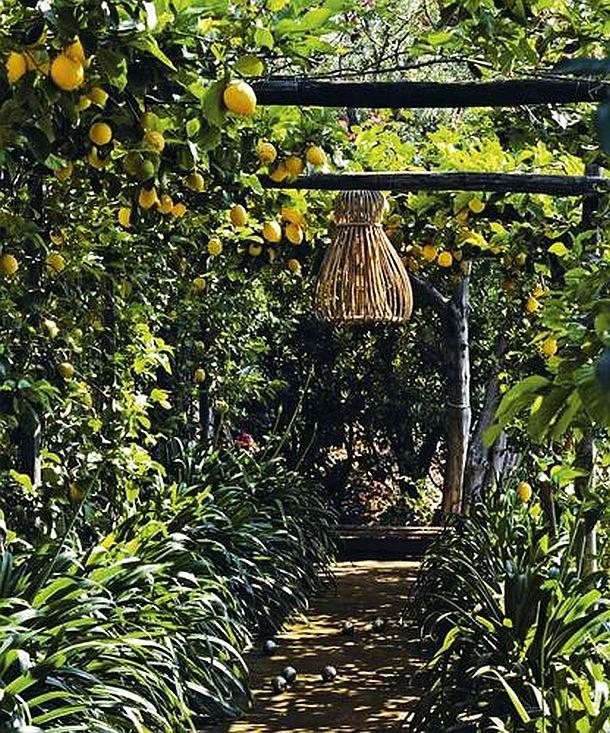 adelaparvu.com despre casa de vacanta in Italia, casa Matteo Thun in Capri (10)