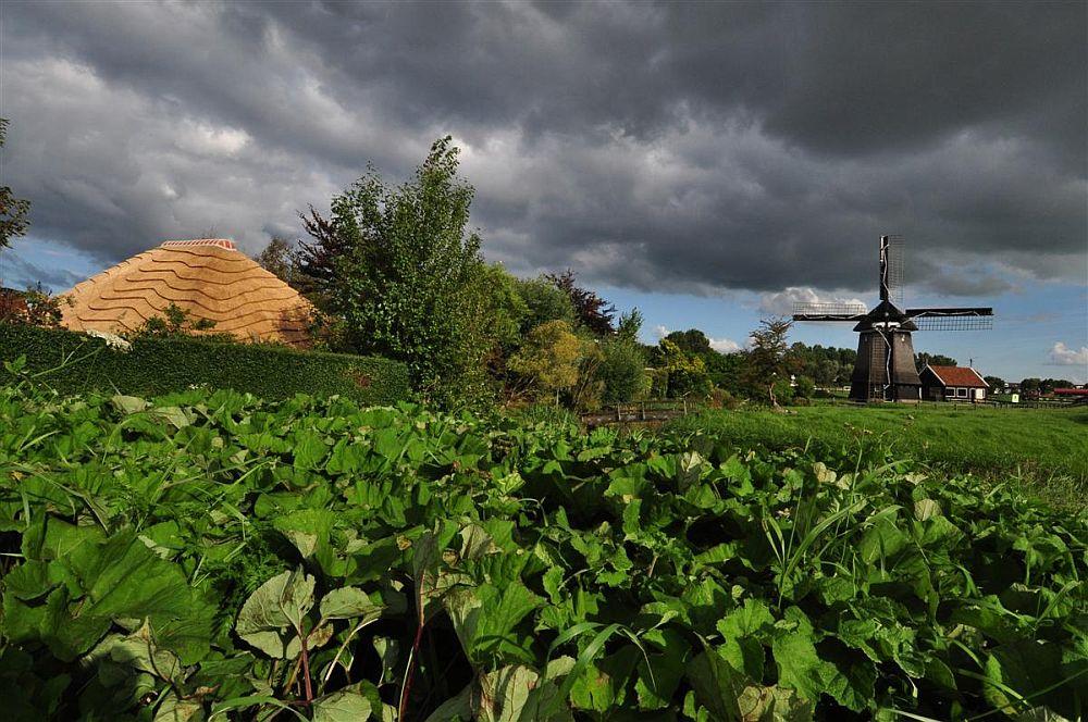 adelaparvu.com despre casa hambar cu acoperis din stuf, casa olandeza, Reet Barn, design 24 H Architecture (3)