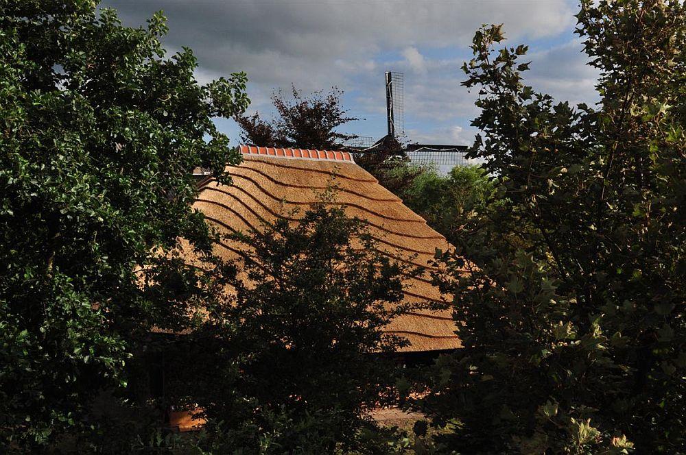 adelaparvu.com despre casa hambar cu acoperis din stuf, casa olandeza, Reet Barn, design 24 H Architecture (4)