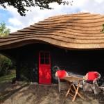 adelaparvu.com despre casa hambar cu acoperis din stuf, casa olandeza, Reet Barn, design 24 H Architecture (5)