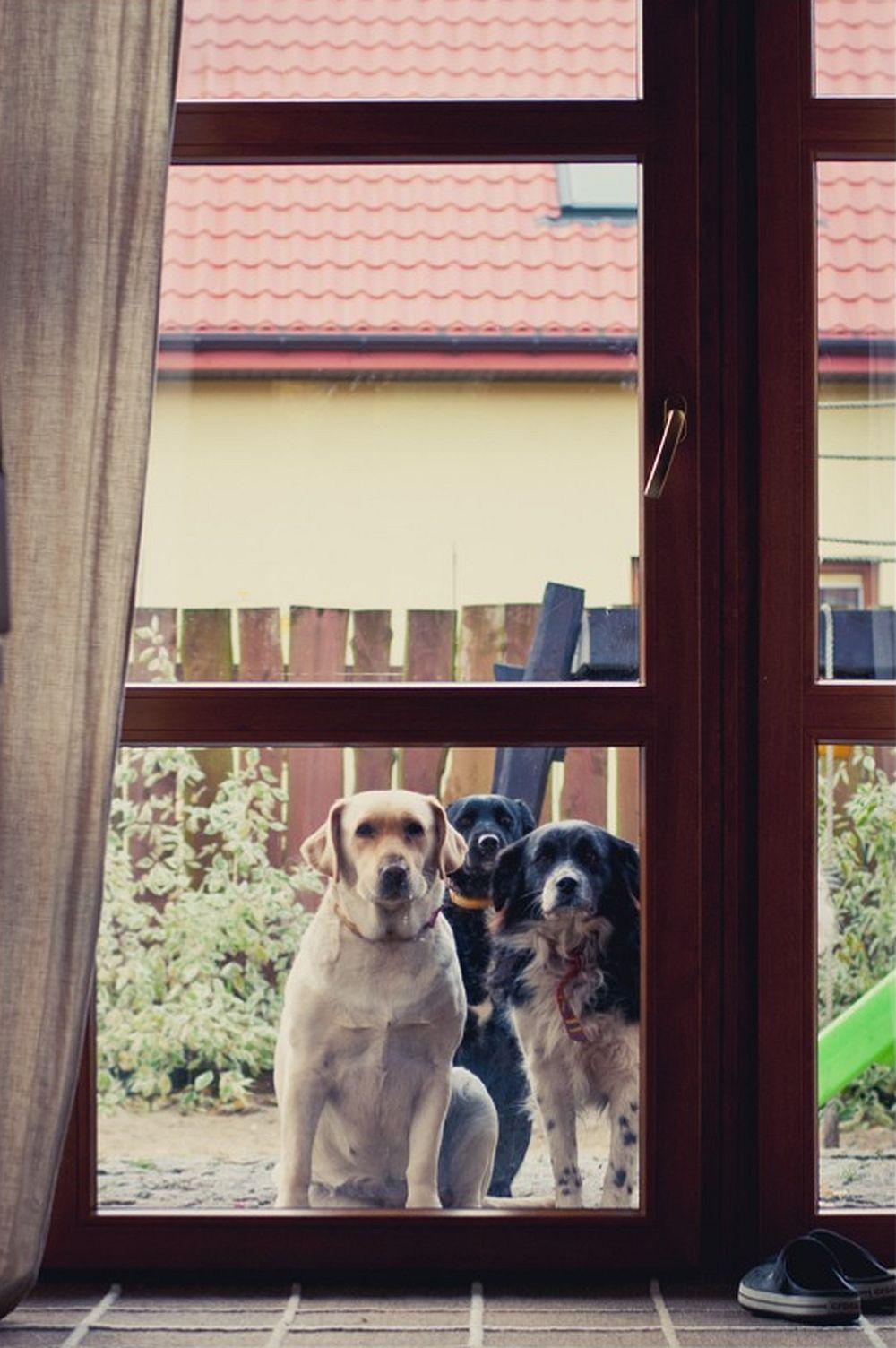 adelaparvu.com despre casa in stil scandinav, casa de blogger, Minty House, Foto Ewa Szymczak (15)