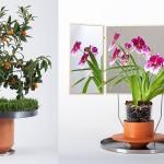 adelaparvu.com despre ghivece cu accesorii, colectia Phytophiler, designeri Dossofiorito, Foto Omar Nadalini