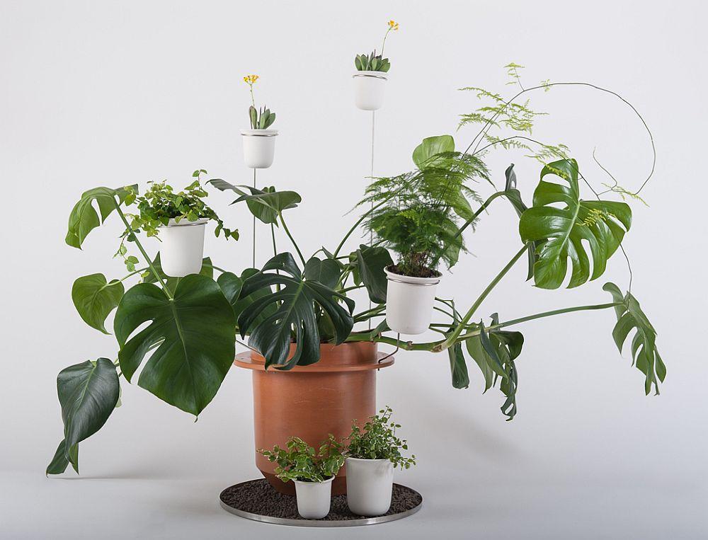 adelaparvu.com despre ghivece cu accesorii, colectia Phytophiler, designeri Dossofiorito, Foto Omar Nadalini (16)
