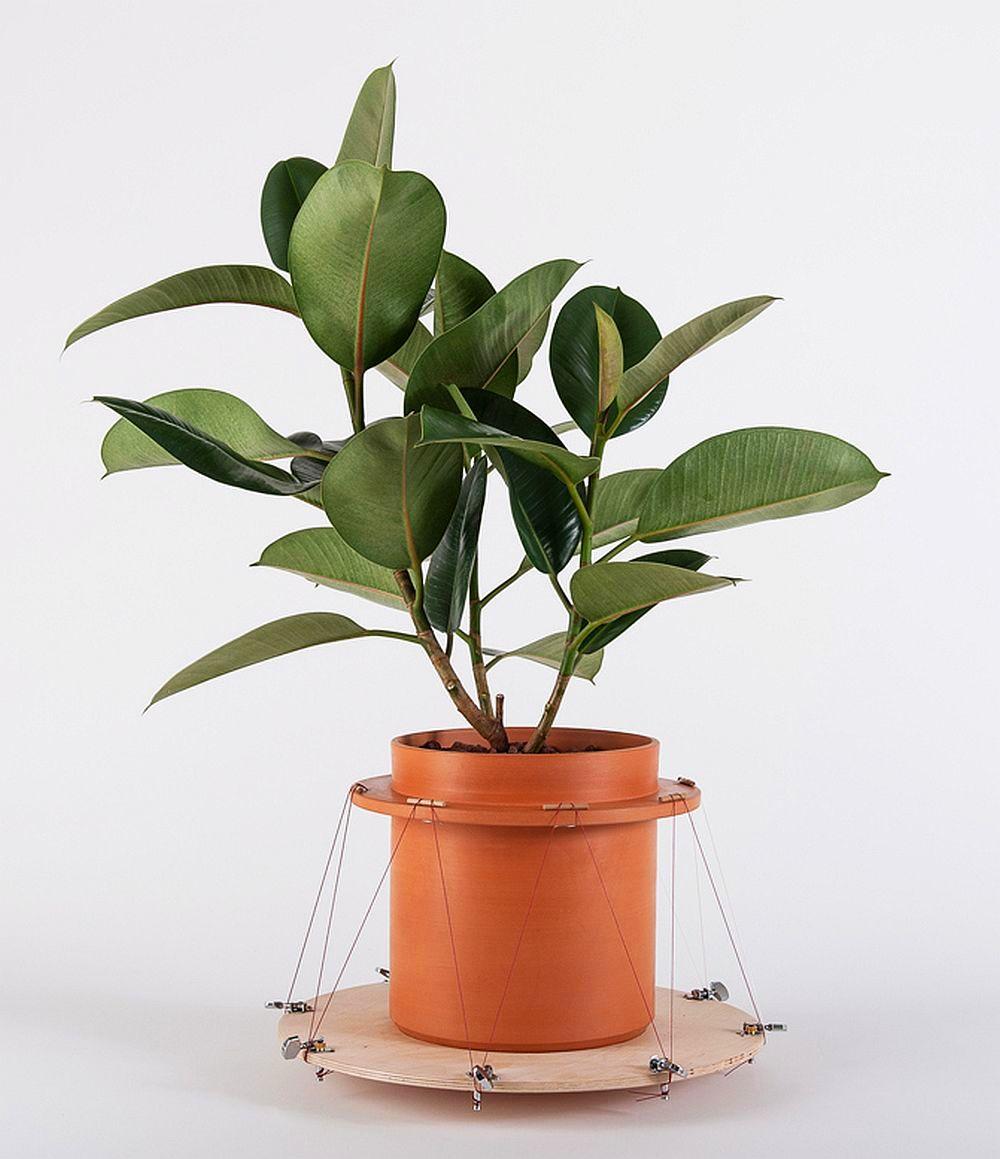 adelaparvu.com despre ghivece cu accesorii, colectia Phytophiler, designeri Dossofiorito, Foto Omar Nadalini (7)