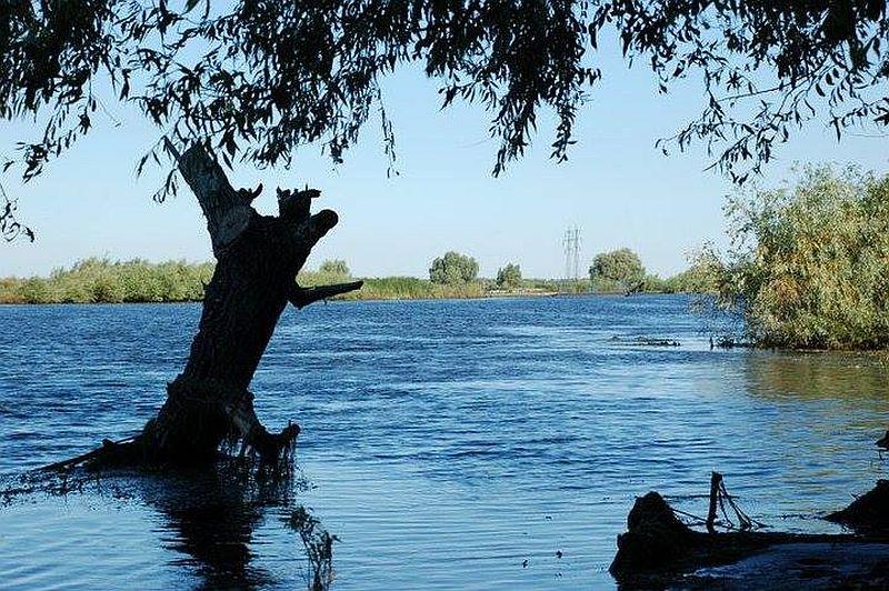adelaparvu.com despre pensiune in Delta Dunarii, Pensiunea Doi Capitani, satul Crisan (26)