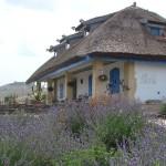 adelaparvu.com despre pensiune traditionala in Delta Dunarii, Enisala Safari, Danube Delta, Romania (19)