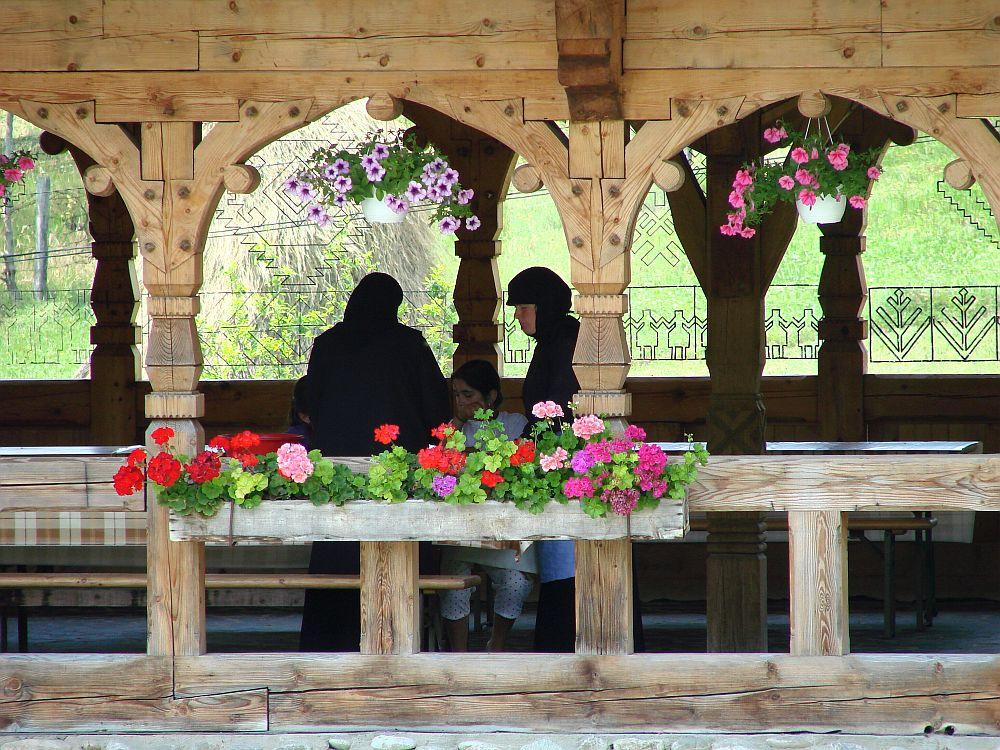 adelaparvu.com despre plante la ghiveci cu flori, plante traditionale romanesti, Text Carli Marian (7)