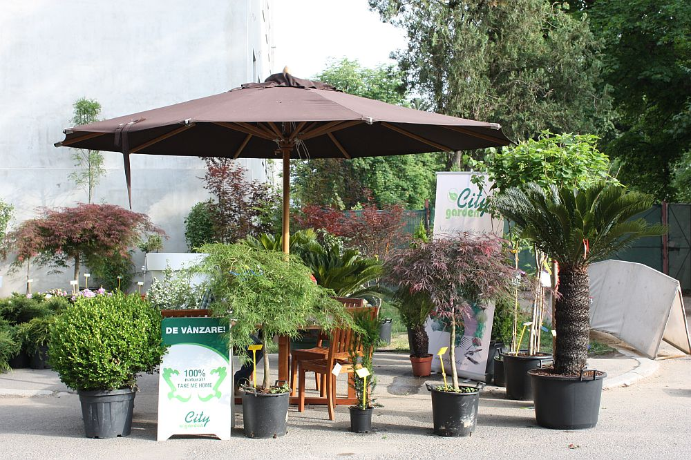 adelaparvu.com despre targul de plante, flori si peisagistica Hartus Florshow 2014 (17)