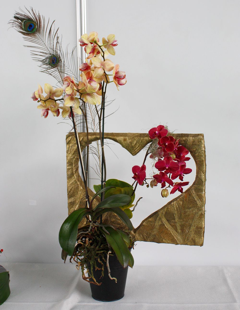 adelaparvu.com despre targul de plante, flori si peisagistica Hartus Florshow 2014 (3)