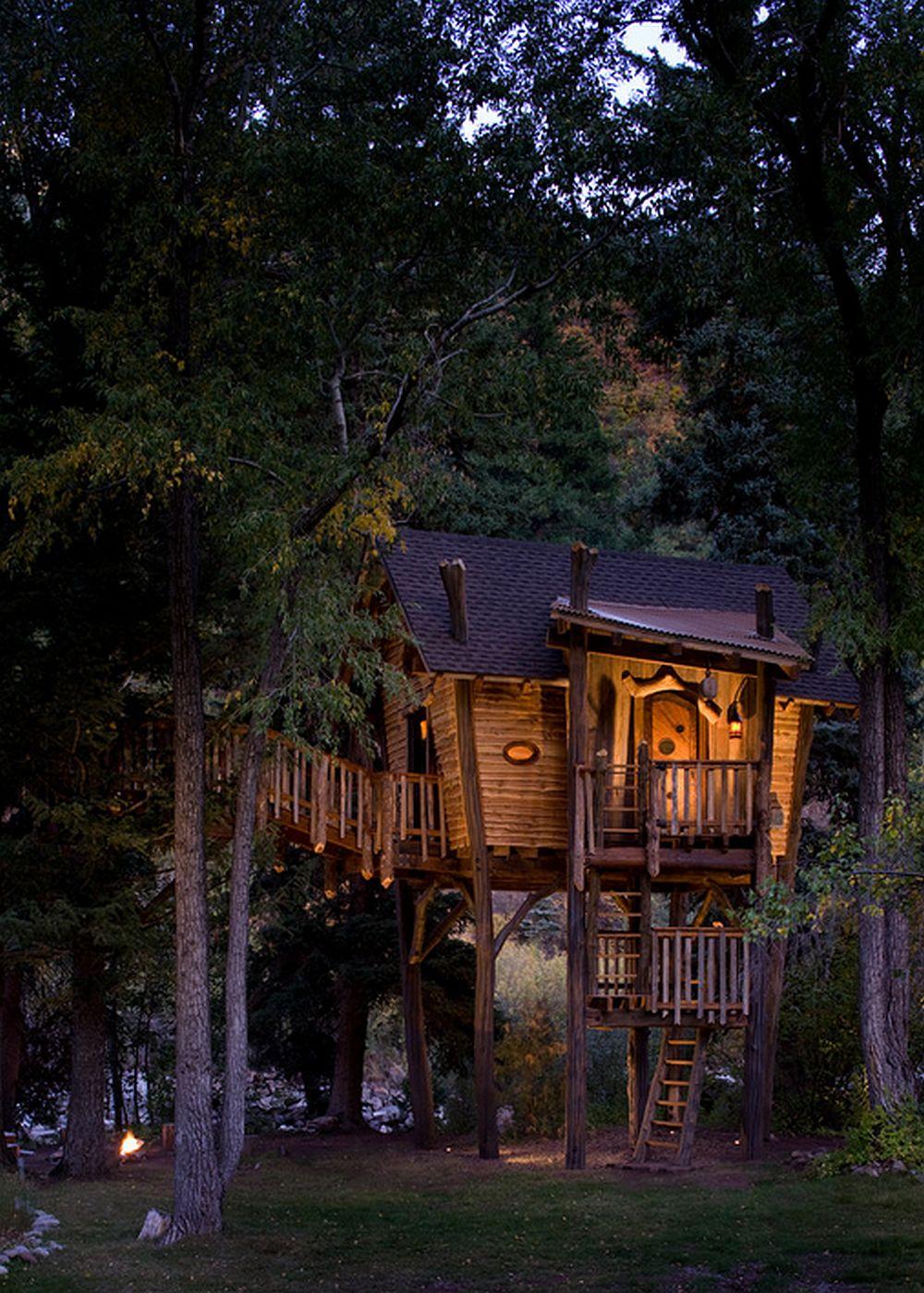 adelaparvu.com despre casa in copac, casa SUA, design David Rasmunssen, Green line Architects, Foto Brent Moss (2)