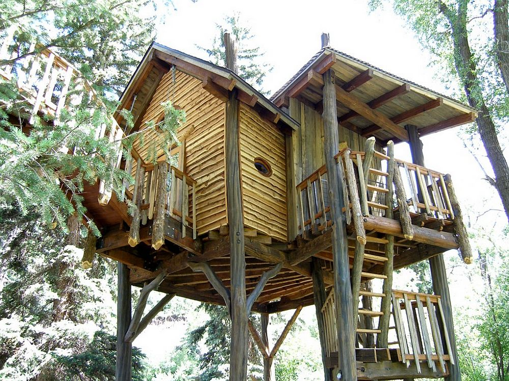 adelaparvu.com despre casa in copac, casa SUA, design David Rasmunssen, Green line Architects, Foto Steven A. Novy (3)