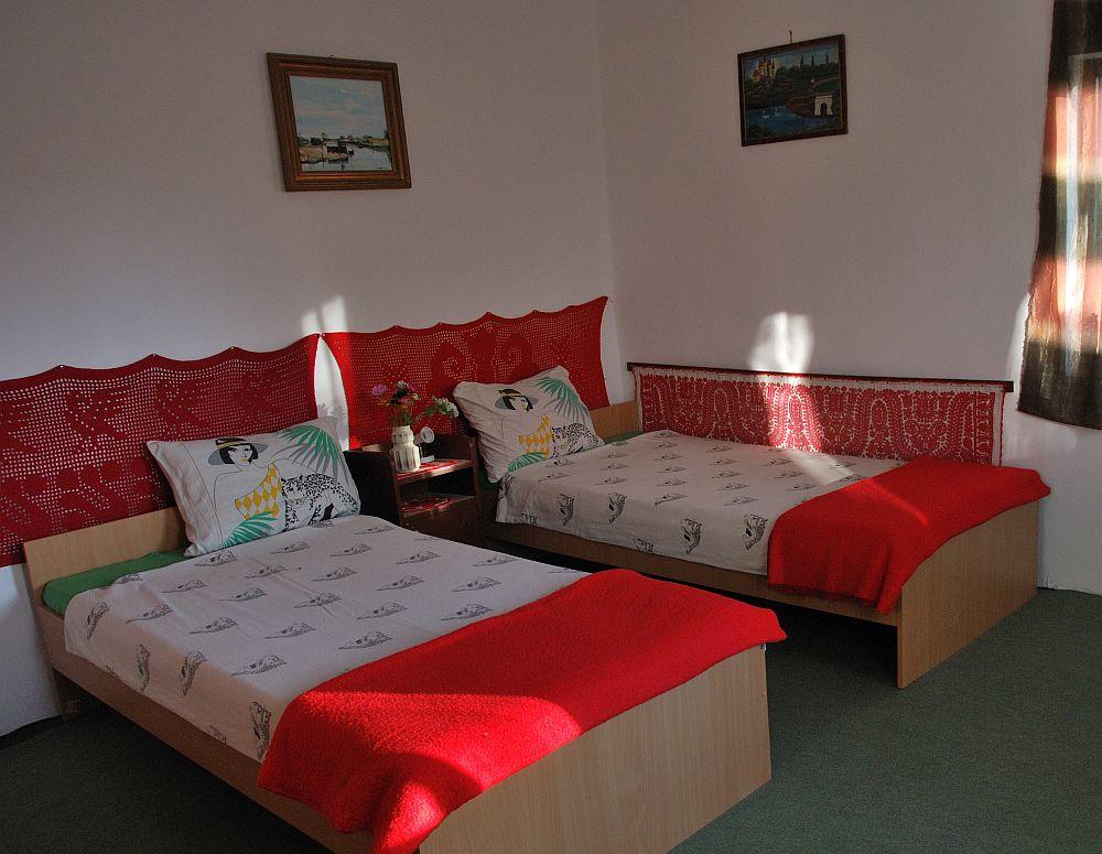 adelaparvu.com despre case traditionale in Delta Dunarii, Pensiunea Tony, Sfantu Gheorghe, Delta Dunarii (4)