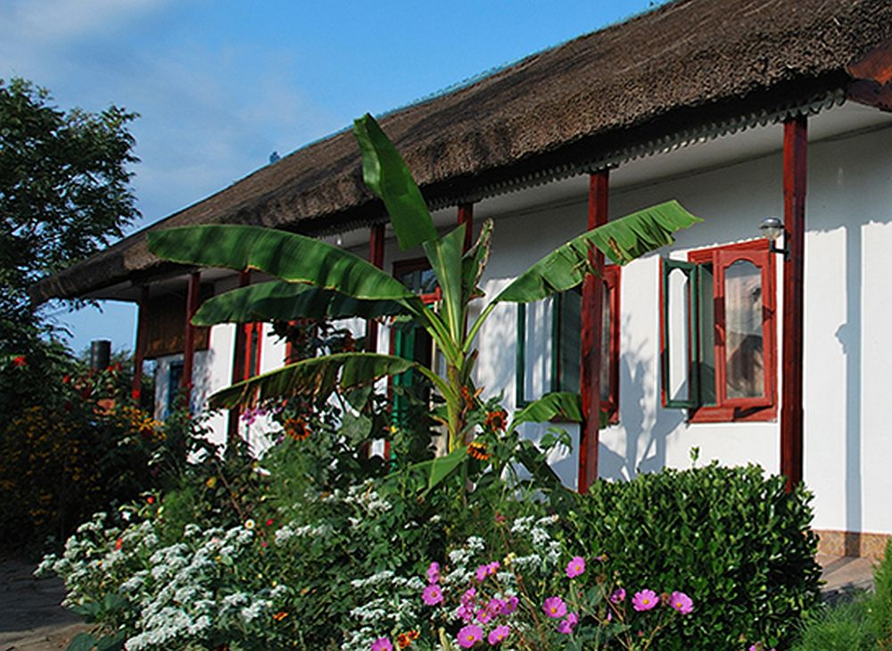 adelaparvu.com despre case traditionale in Delta Dunarii, Pensiunea Tony, Sfantu Gheorghe, Delta Dunarii 8
