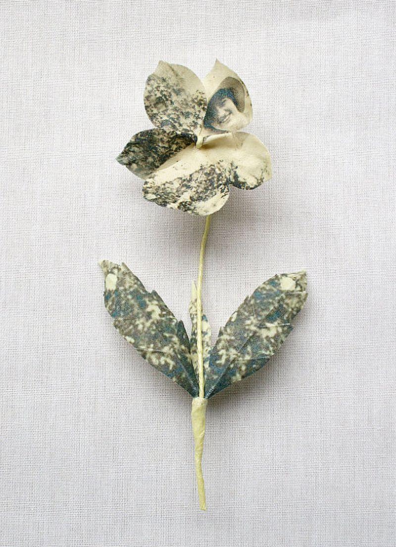adelaparvu.com despre flori, frunze, pene de bumbac imprimate cu imagini vintage, artist Miranda van Dijk, Puur Anders (28)