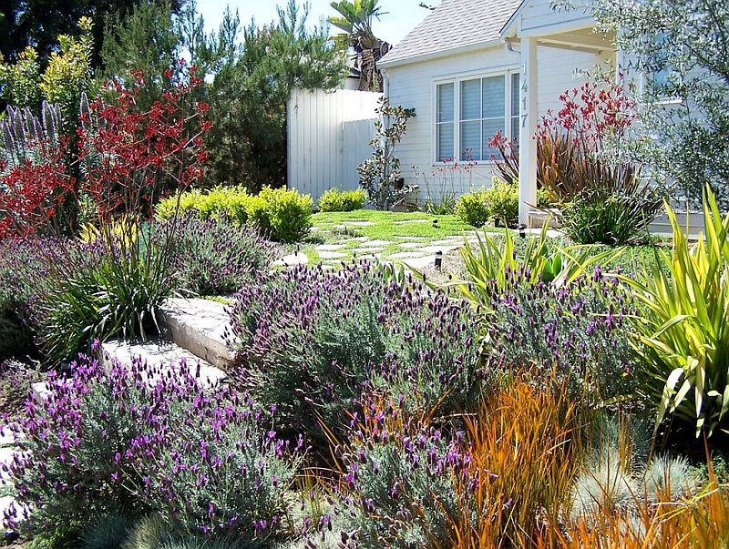 Foto BE Landscape Design