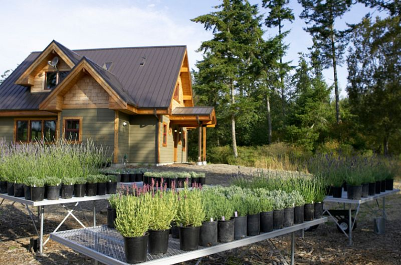 Foto Lindal Cedar Homes