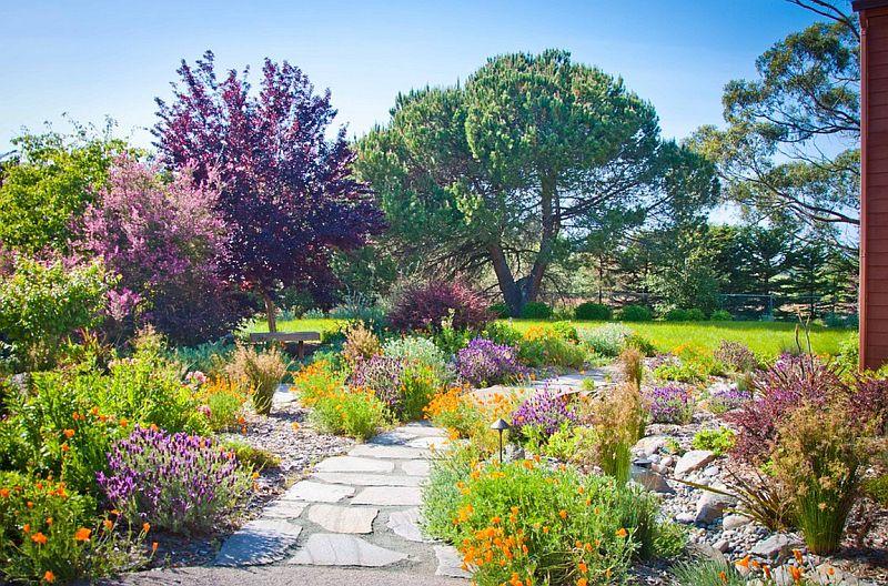 Foto Sage Ecological Landscapes and Nursery
