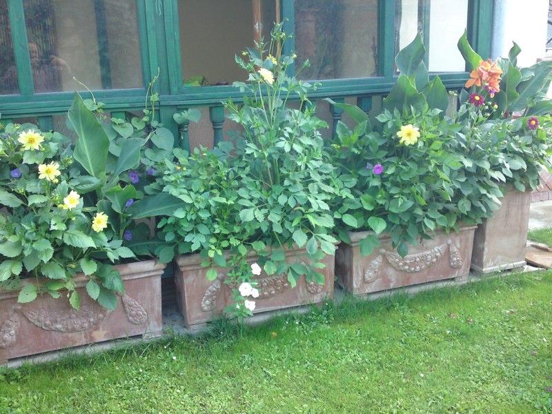 adelaparvu.com despre vase, ghivece, statuete, jardiniere din teracota, design Terecote, Sighisoara (28)