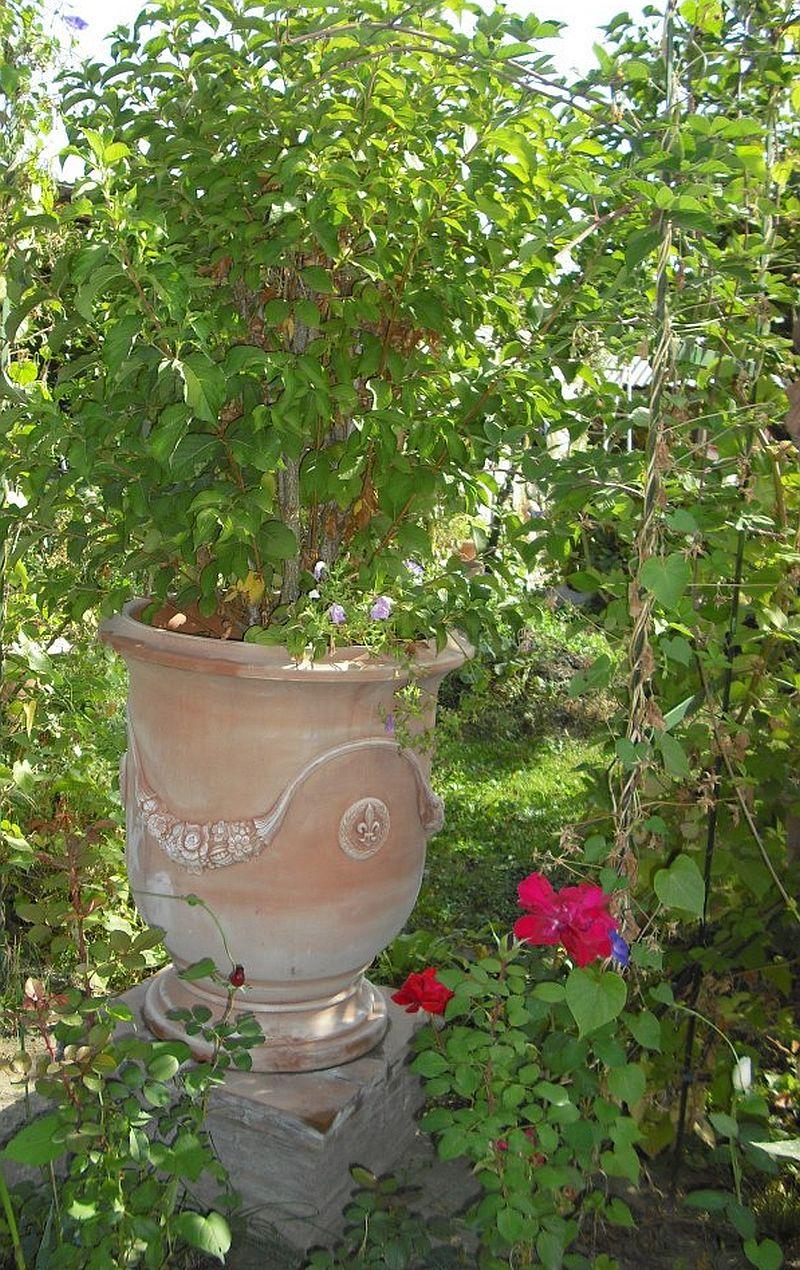 adelaparvu.com despre vase, ghivece, statuete, jardiniere din teracota, design Terecote, Sighisoara (3)