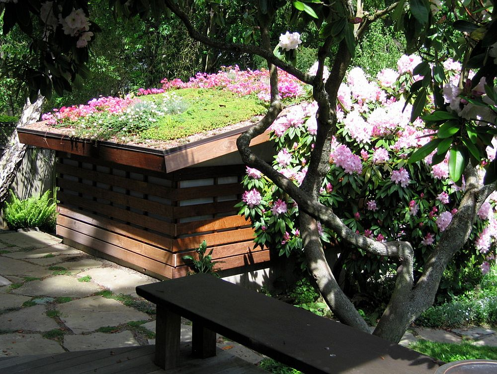 adelaparvu.com despre acoperis cu plante, gradina pe acoperis, acoperis verde, design Noland landscape Design, Foto  Bill Noland(3)