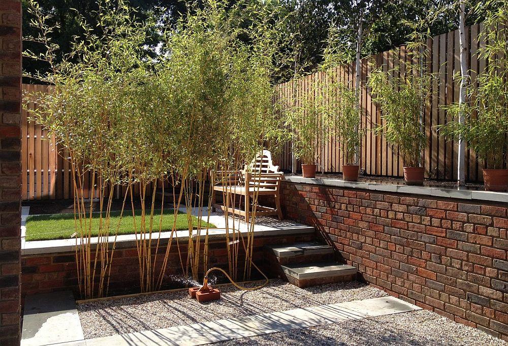 adelaparvu.com despre bambusul in gradina, text Carli Marian (3)