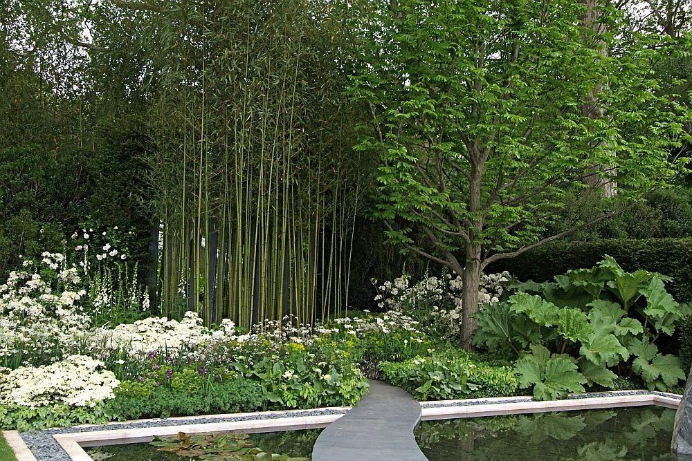 adelaparvu.com despre bambusul in gradina, text Carli Marian (8)