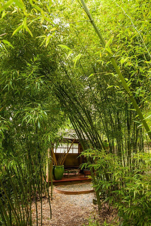 adelaparvu.com despre casa mica cu acoperis din plante, casa in stil japonez, design David Coulson, Foto Debra Brash (15)
