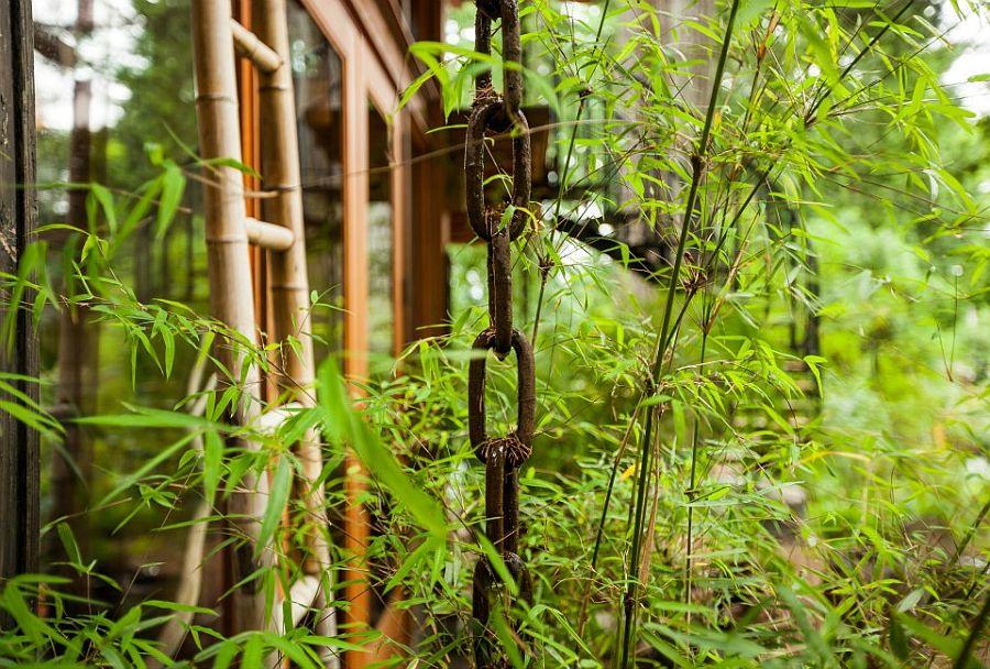 adelaparvu.com despre casa mica cu acoperis din plante, casa in stil japonez, design David Coulson, Foto Debra Brash (17)