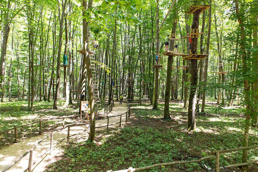 adelaparvu.com despre casute in copaci si parc de aventura Balotesti, Edenland Park, Romania (18)