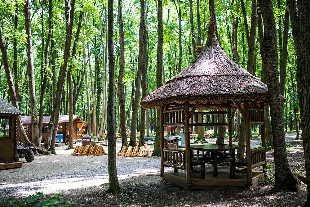 adelaparvu.com despre casute in copaci si parc de aventura Balotesti, Edenland Park, Romania (21)