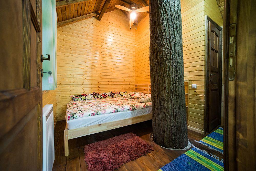 adelaparvu.com despre casute in copaci si parc de aventura Balotesti, Edenland Park, Romania (26)