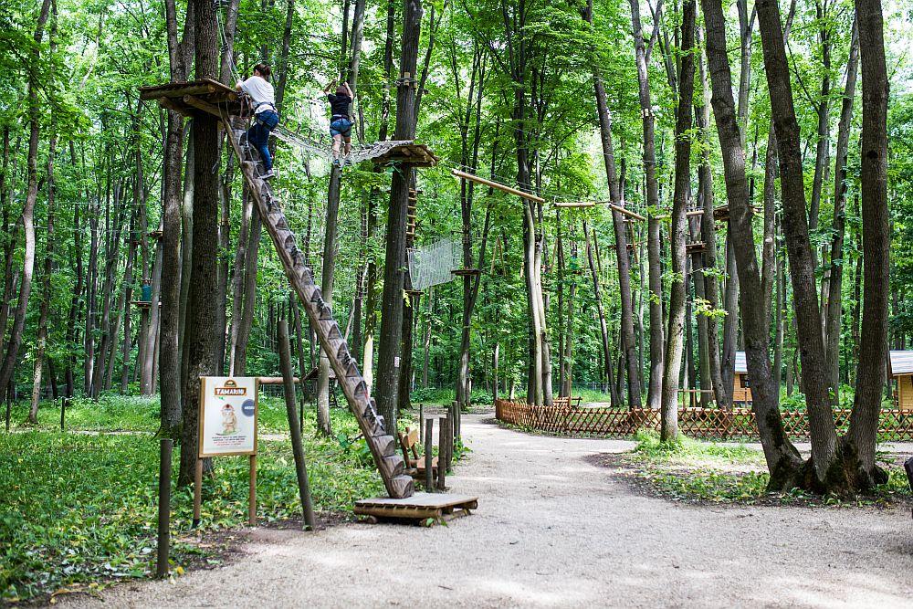 adelaparvu.com despre casute in copaci si parc de aventura Balotesti, Edenland Park, Romania (34)