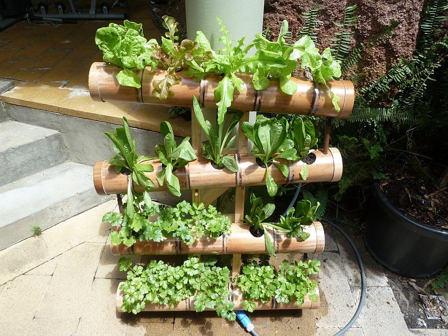 adelaparvu.com despre garduri cu loc pentru plante si rafturi verticale cu plante (1)