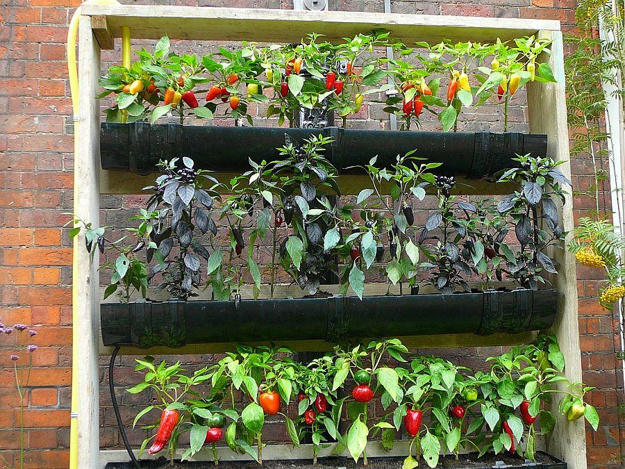 adelaparvu.com despre garduri cu loc pentru plante si rafturi verticale cu plante (3)