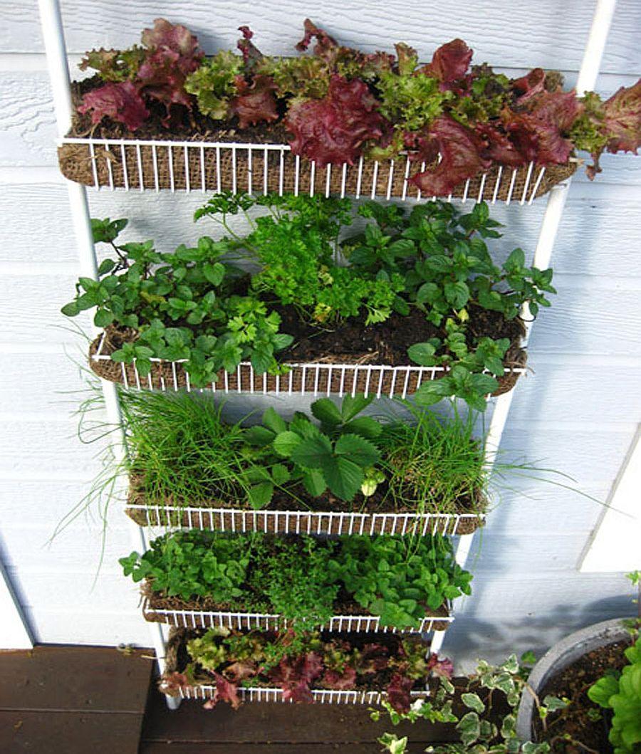 adelaparvu.com despre garduri cu loc pentru plante si rafturi verticale cu plante (4)