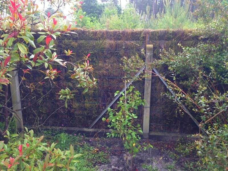 adelaparvu.com despre garduri eco din plante, garduri din Brande, fabricant Franta Aquitaine-Cloture (12)