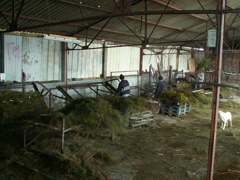adelaparvu.com despre garduri eco din plante, garduri din Brande, fabricant Franta Aquitaine-Cloture (19)