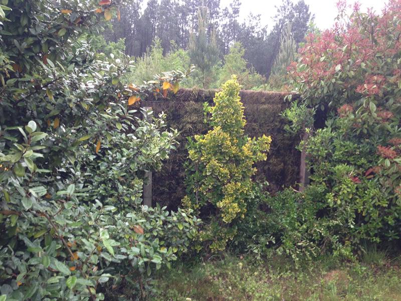 adelaparvu.com despre garduri eco din plante, garduri din Brande, fabricant Franta Aquitaine-Cloture (29)