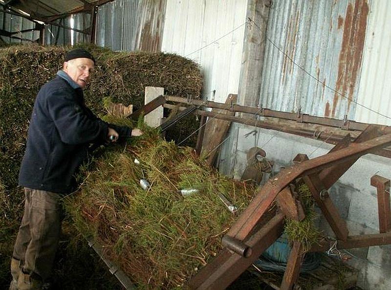 adelaparvu.com despre garduri eco din plante, garduri din Brande, fabricant Franta Aquitaine-Cloture (7)