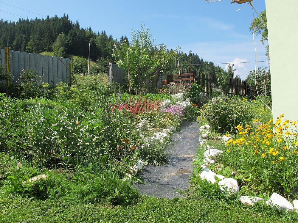 adelaparvu.com despre gradina la munte, gradina cu flori si legume (10)
